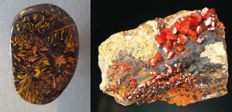 Lot: Boulder opal (21,2 ct) & Vanadinite (183 gr) (2)