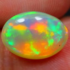 Opal Welo. Large set of colours - 11.4 x 8.9 x 5.7 mm - 2.75 ct.