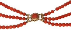 14 kt three-strand precious coral necklace with a yellow gold clasp set with precious coral – length: