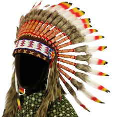 Indian headdress - natural feather