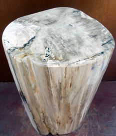 Side table in petrified wood - 40 X 22 X 20 - 30,4 KG