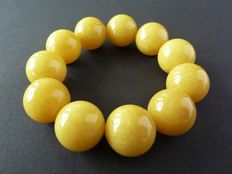 Baltic Amber bracelet in egg yolk colour 48.61 gr.