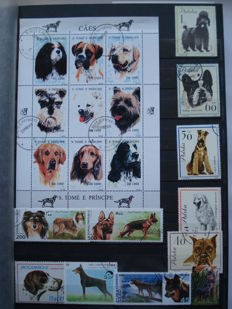 Thematic Stamps – Pets, Dogs and Cats 1,400 stamps and 25 blocks in a classifier