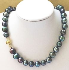 Pearl necklace of peacock, baroque, salt water pearls, length 45 cm with 14 kt yellow gold clasp.