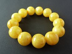 Baltic Amber bracelet egg yolk honey colour, 40.59 gr.