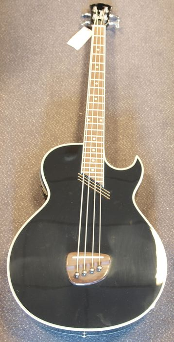New Richwood Limited Handmade Electro Acoustic Bass Guitar Colour