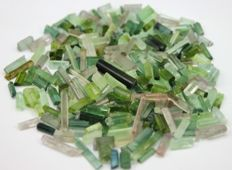 Natural Paraiba color Tourmaline Crystals lot - 50 gm - 250 Cts
