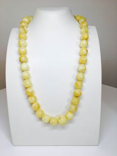 Baltic Amber, beaded necklace egg yolk, white colour, 56 grams