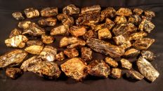 Lot of Raw White-Blue colours  Amber pieces - 1,66 kg.