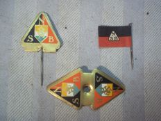 3 Rare pins of the NSB given at party meetings, 2 variants.