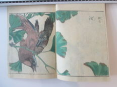Woodcut book 'Shashin Kacho Zue' by Kitao Shigemasa - Japan - 1805