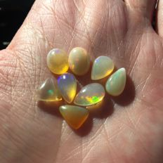 Lot of Opals - 9.34 ct  (8)