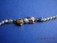 A necklace of cultured seawater Akoya pearls c.1950-70 with a golden buckle Style Art Deco