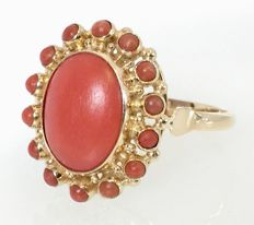 14 kt gold ring set in the centre with a red coral of 12 mm - Ring size: 17.98 mm
