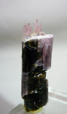 Natural Etched Pink Cap Tourmaline Crystal - 45 x 15 x 15 mm - 12gm