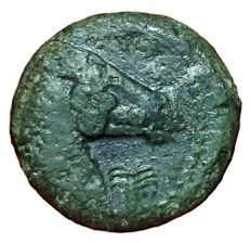 Greek Antiquity - North Africa, Zeugitania, Carthage - Æ (17mm; 3,68g.), c. 300-264 BC - Sardinia? mint - Head Tanit / Horsehead - SNG Cop. 175