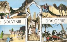 Algeria - Lot of 200 postcards - from the 50s to the 70s. Beautiful memories of algeria