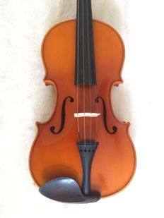 Violin including vintage case