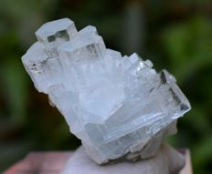 Terminated & Undamaged Aquamarine Crystals Cluster with Excellent Luster & Clarity - 190 carats , 43*32*28 mm