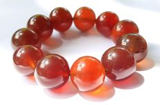 Indonesian cognac/blue 100% natural fluorescent Amber bracelet, 71g
