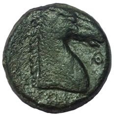 Greek Antiquity - North Africa, Zeugitania, Carthage - Æ (18mm; 4,92g.), c. 300-264 BC - Sardinia? mint - Head Tanit / Horsehead - S. 6526