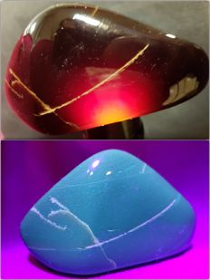 Polished Blue-Red Indonesian Amber – 100% Natural Stone - 90 x 50 x 50 mm - 100g