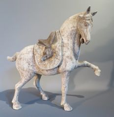"""""""Prancing horse"""" in full colour terracotta, removable saddle, Tang dynasty, with TL test - Size: 34.5 cm X 37.5 cm"""