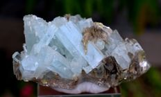 Double Terminated & Undamaged Aquamarine Crystals Cluster with Mica Specimen - 81*41*35 mm - 130gm