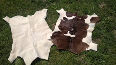 2 small calf skin - Two Little Veal Hide
