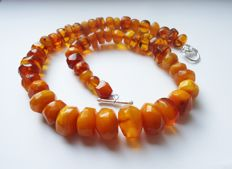 Old Baltic Amber necklace, weight 63 gr.