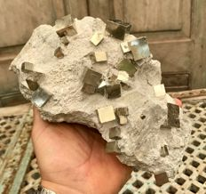 Large piece of matrix with huge Pyrite mono crystals - 20 x 10.5 x 10 cm - 2.52 kg