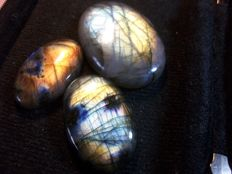 Three Labradorites - multicolour - 242.0 cts total