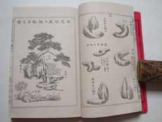 Original vintage book on Japanese garden design - Tsukiyama teizoho Vol.1  - Japan - 1896
