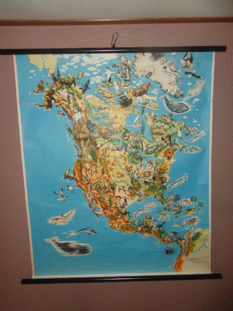 Beautiful old school map / school poster of North America with its wild ...