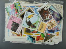 Worldwide collection of over 10,000 stamps, in 5 packs of 1000 and approx. 1000 blocks - North Korea