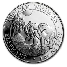 1 oz African wildlife series - elephant - 2017 - 100 shillings - 999 silver coin