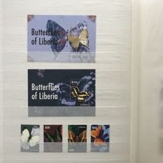 Theme butterflies – collection in insertion books, amongst which 59 blocks.