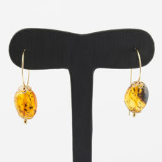 Yellow gold of .750 (18 kt) – Earrings with oval shape amber – Maximum earring height: 40.00 mm (approx.).