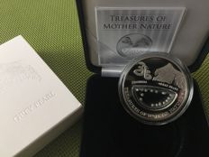 Fiji - 1 Dollar 2014 'Treasures of Mother Nature - Indonesia Grey Pearl' - 20 g silver