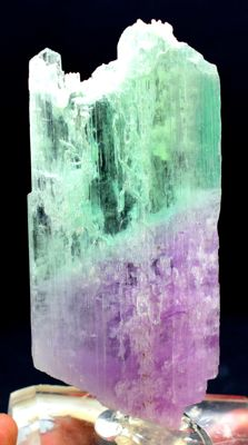 Unique undamaged bi color kunzite hiddinite crystal - 143gram - 129*56*9mm