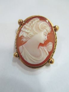 Oval cameo on mother-of-pearl - Vintage