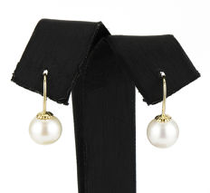 Yellow gold (18 kt) - Earrings with fish hook backs - Akoya pearl of 8.15 mm - Earring height: 17.05 mm