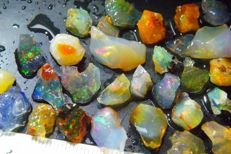 Top Multi Color Rough Mexican Crystal Fire Opal / Crystal - 85 ct (35)