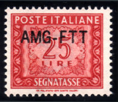 Trieste A 1954 Postage Due AMG-FTT New type with overprint