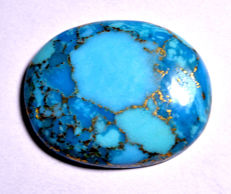 Natural turquoise in blue with golden flakes - 31.37 x 24.84 x 6.10 mm - 38.35 kt