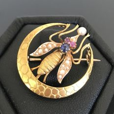Rare 19th century brooch in 18 kt yellow gold in the shape of a fly decorated with a sapphire, rubies, and real pearls.