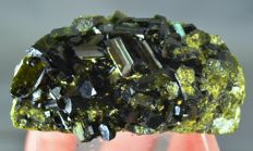 New find Terminated Epidote Lustrous Crystals Bunch on Matrix with natural High Polish - 65 x 37 x 29mm - 93 gm
