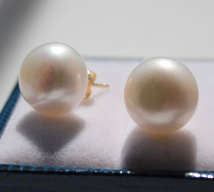 14 kt yellow gold earrings, set with a pearl of 11 mm