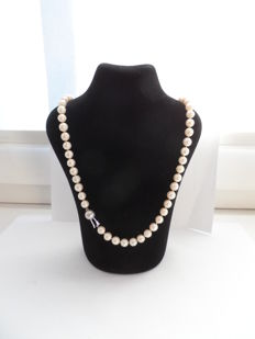 A Beautiful Necklace with Akoya Saltwater Pearls - 47 cm