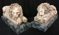 A pair of marble dust powder lions with an Alpi green marble base - Italy, Venice - 20th century